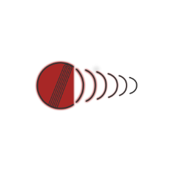NB DC 1280 Players Edition English Willow Cricket Bat
